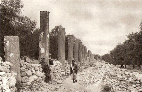Ruins_of_Samaria